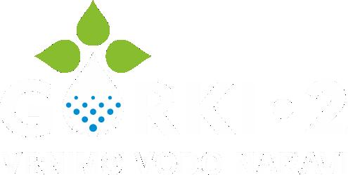 Gorki2